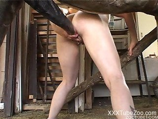 Busty wife delights with giant horse inches in her mouth and pussy