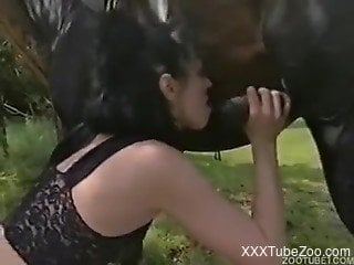 Two females and guy threw foursome with horse outdoors