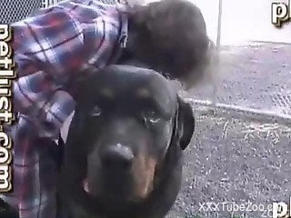 Girl fucked by huge dog swallows its sperm in the end