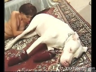 Slut zoophile sucks her doggy with passion