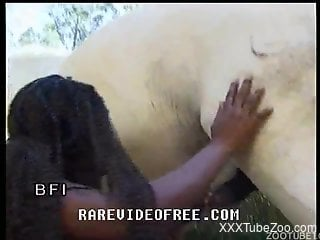 Black beauty sucks her stallion with love