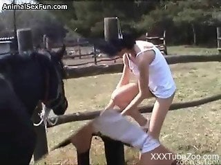 Brunette received horse cum during intensive dick sucking