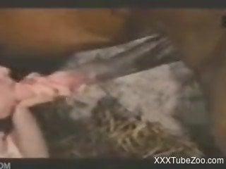 Brunette eats a horse dick in awesome farm bestiality XXX