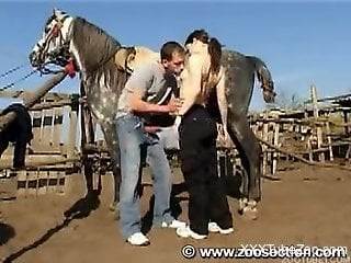 Enjoy awesome zoo tube to see how brunette sucks a stallion