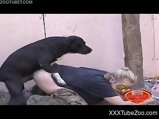 Several dogs fuck submissive blonde who lies tied up outdoors