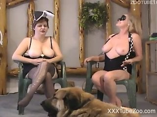 Hairy dog is shared by two classy MILFs with big boobs