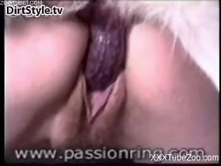 Compilation of various sluts slammed by own dogs from behind