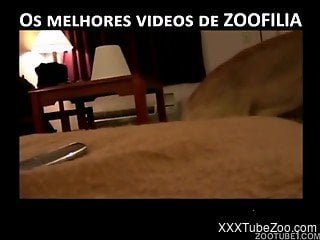 Zoophile films on camera his sexual adventures with own dog