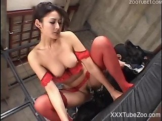 Red lingerie JAV zoophile rides a dog's meaty cock