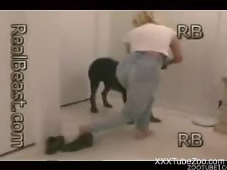 Blond-haired beauty gets banged by a black dog