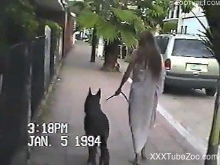 Retro bestiality video with a leggy brunette amateur