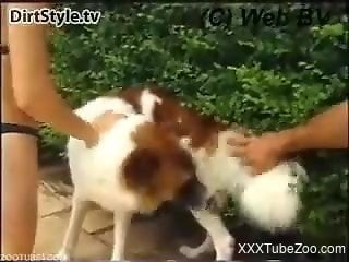 Hardcore doggy style sex with a dog, in public