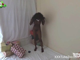 Ebony slut first time fucking with the dog on cam