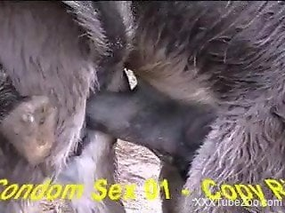 Dirty donkey blows his massive load in a condom