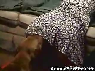 Sundress-wearing MILF getting fucked by a dog from behind