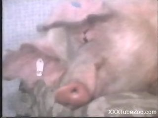 Pig with a nice cock fucking a thick babe on a couch