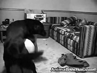 B&W zoophile scene with a really sexy housewife